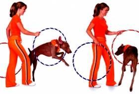 Прыжки в кольца - змейка