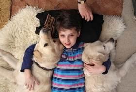 Канистерапия или лечение собаками