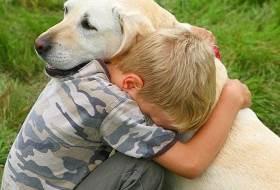 Усыпить собаку - нужно ли?